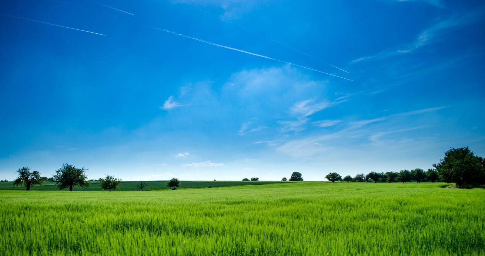 איך לקנות קרקע להשקעה בארצות הברית בפחות מ 250 דולר