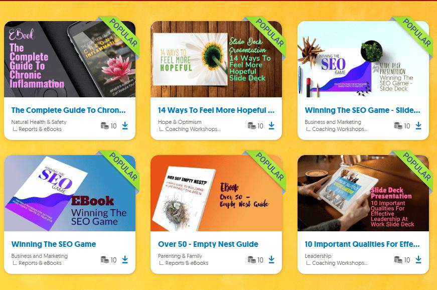 3 אתרי PLR הטובים ביותר שאפר להרוויח מהם כסף